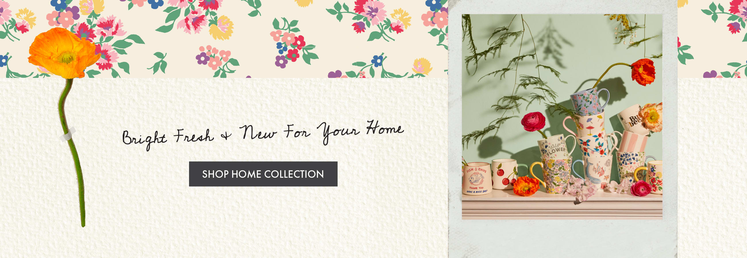 Bright, Fresh and New For Your Home